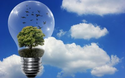Renewable Resources Contribute to Our Daily Lives