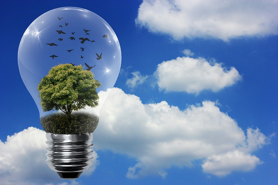 renewable-resources-contribute-to-our-daily-lives